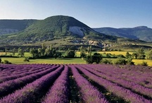 Drôme et Provence