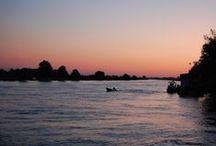 Delta Dunării/Danube Delta / photo: Alexandru Diaconescu