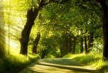 Natural Beauties / beautiful scenery nature awe inspiring beauties