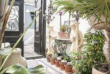 Garden & Conservatory