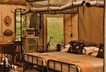 African Colonial Trends / Bushveld Living