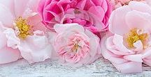 Beautiful roses /  Floral arrangements with roses photos