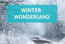 Winterwonderland / Weiße Wälder, Schneeballschlachten, Ski & Snowboards, Huskyschlitten fahren und heiße Schokolade... Hier findest du Inspiration und schöne Reiseziele für den Winterurlaub.  Meine Artikel findest du auch auf meinem Reiseblog goingvagabond.de