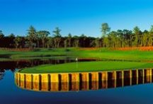 The Castle Course / At The Castle Course, you won't simply be playing golf, you'll be competing shot-for-shot against the most legendary holes in all of golf. This one-of-a-kind replica golf course takes guests into an environment most could only dream about.