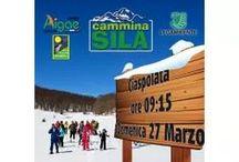 Calabria Escursioni - tour con servizio guida / escursioni sulla neve con le ciaspole o passeggiate con servizio guida #CamminaSila - trekking - mountain-bike in #Calabria #prenota direttamente il tuo percorso qui