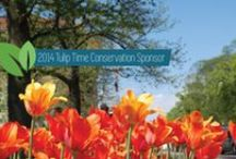 Tulip Time Conservation Sponsor / We're excited to be the Tulip Time Conservation sponsor again! Check this board for daily conservation tips, photos from the festival and more.