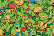 Teenage Mutant Ninja Turtles Everything!! / by Pamela Kerr