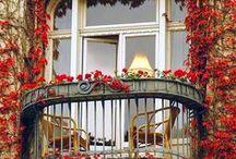 Balconies, Windows & Doors of FRANCE