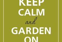 Gardening / by Jaime Sundberg