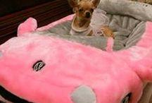 Dog Beds / Luxury dog beds / by Debbie Napper