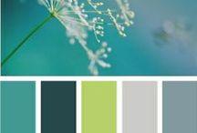 Verde Petrolio / Il verde petrolio è un colore che si sposa bene con il blu e il nero nelle tonalità scure, e con il rosso, il bianco o il beige per bilanciare toni caldi e freddi. Dona uno stile fresco e raffinato durante tutto l'anno ed utilizzalo anche per l'arredamento di casa, con Coloreria Italiana Tutto in 1 è facilissimo!