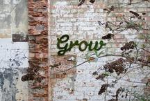 make + do // garden + backyard / by Erin Pate