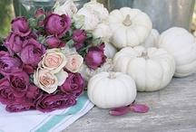 Flowers / by Truth Art Beauty