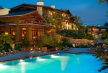 Our Sister Properties / The Evans Hotels Family is comprised of the Lodge at Torrey Pines, the Catamaran Resort Hotel and Spa, and the Bahia Resort Hotel. Here we will showcase our favorite images from all three properties!