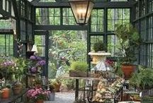 Home: Conservatories, sun rooms and green houses. / The art to relax while you are working with plant. / by Cecilia Bowerman