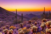 Travel - Arizona / Arizona travels