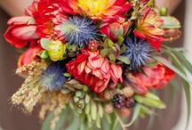 Floral / Arrangements, bouquets, and other beautiful Stems