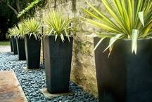 Pots, pots, pots / A Landscape Architects board on favorite pots and planters