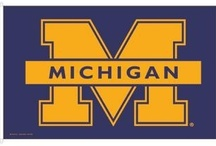 University of Michigan / This board needs no explanation. Go Blue!