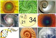 Golden ratio ~ Abū Kāmil Shujā ibn Aslam   / The works of Abu Kamil influenced other mathematicians, likeal-KarajiandFibonacci, and as such had a lasting impact on the development of algebra. / by Pixel Moment