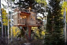 Totally cool tree houses ..... / I love being a big kid ......