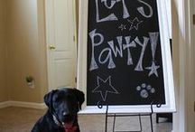 It's Pawty Time / Ideas for your next puppy pawty.