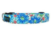 Dog Collars / Handcrafted Dog Collars from Best Dog Collars