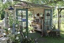 Garden / Outside