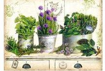 Obrázky  styl Provence