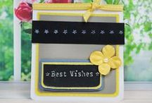 The Border Embossing Folder Collection / by Tattered Lace Dies