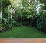 Semi Tropical Landscape / Ideas and Inspiration for my planning in landscaping the side garden into a beautiful semi tropical garden.