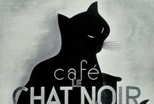 // black gatos / by meligrosa
