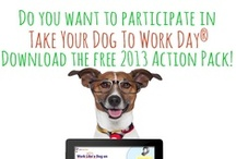Take Your Dog To Work Day / June 2013 - Take your dog to work!!