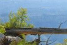 ~ Fine Art / Drawings, paintings, sculptures..... / by Teresa Loveslife