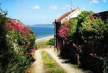 Cottages / Cottages For Sale in North Devon