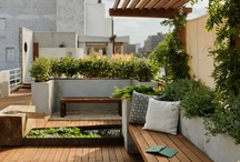 outdoor living / by Ann Delport