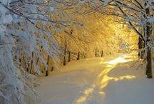 "WINTER BEAUTY / ""Winter, a white breath. The season of still, silent beauty… and deep peace."" —Heather K. O'Hara"