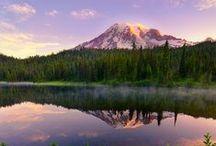 We love Washington State!