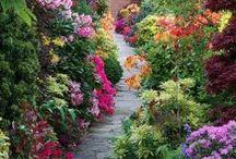 jardines con encanto ideas para tener el jardn de tus sueos