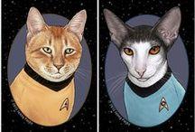 CRITTER Cat Cuddler 6 of 6 / cats / by karen campbell