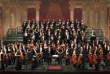 Opera and Music / Parma Highlights about opera and music