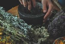 Natural health, beauty and healing / Herbalism, natural cosmetics, household, homesteading
