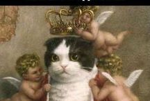 Makes me laugh / My geeky humor, sprinkled with cats.