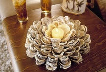 Shell craft / by Shell Queen