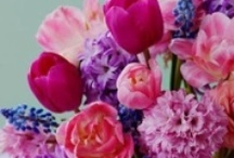 Flower And Table Arrangements / by Robyn Cosson
