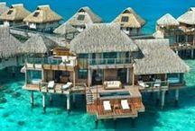 International Dream Homes