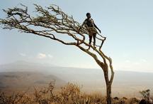 AFRICA  / by Iris Kamminga