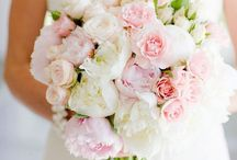 Wedding Ideas / Coral , acqua , mint color palette