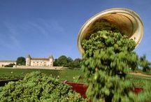 Oenotourisme en Saône-et-Loire / La Saône-et-Loire est une formidable terre de découverte de l'univers viticole ! Productrice de grands vins, elle vous invite avec chaleur à pénétrer dans ses caves, à déguster ses crus, à la rencontre de ceux qui ont lié leur destin à la vigne. S'étirant du nord au sud du département, les vignobles de la Côte Chalonnaise, du Mâconnais et du Beaujolais composent le plus vaste vignoble de Bourgogne, cumulant une trentaine d'AOC.