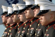 Support the Troops / Homefacts is glad to support the troops of the United States of America!